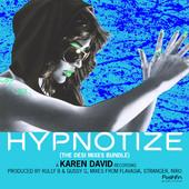 Hypnorize Desi Mixes Bundle